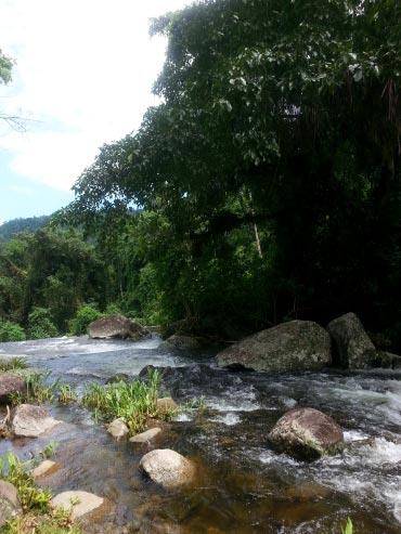 cachoeira-grauna-paraty-361