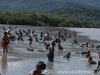 bloco-lama-paraty-2012-38