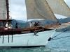 veleiros-parati-darwin-16