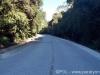 estrada-paraty-cunha-572