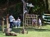 festival-aves-paraty-98