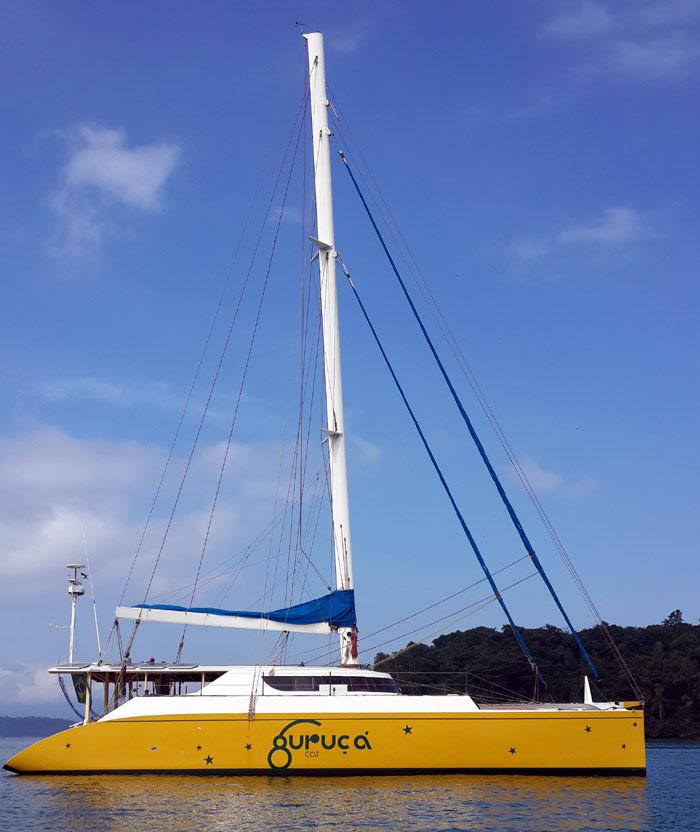 curuca-cat-charter-134