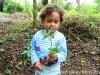 jardim-botanico-de-paraty-4