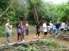 jardim-botanico-de-paraty-7