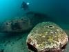 mergulho-em-paraty-gal-3
