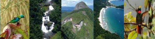 Paraty   parque bocaina paraty 1 Programa de Voluntariado do Parque Nacional da Serra da Bocaina disponibiliza vagas em Paraty