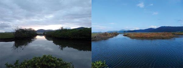 Setor do mangue antes e depois do ataque