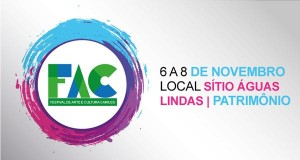 festivalarteculturacairucu2