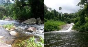 cachoeira-grauna-paraty-367