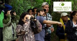 festival-aves-de-paraty