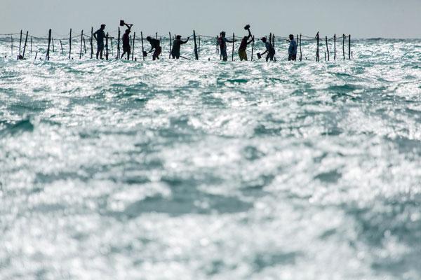 1º LUGAR Pesca artesanal na praia de Bitupitá - Barroquinha/CE Fotógrafo: Francisco das Chagas Machado Brandão (Chico Rasta)