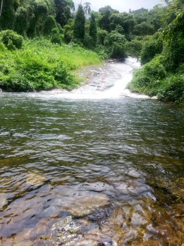 cachoeira-grauna-paraty-359