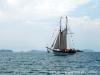 veleiros-parati-darwin-22