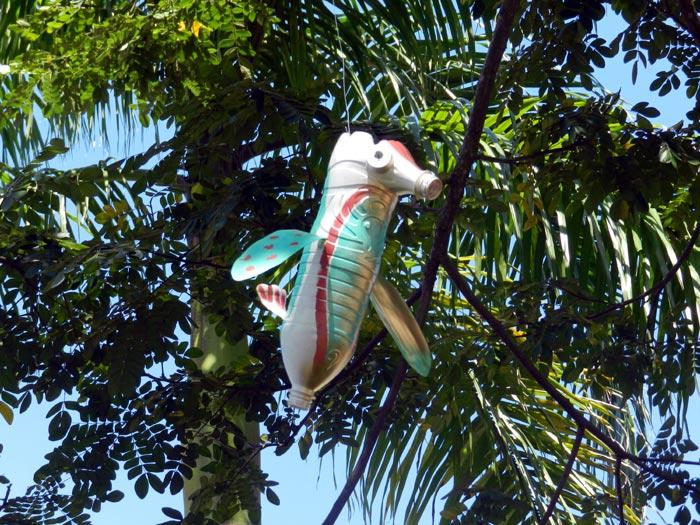 aves-de-paraty-natal-2013-5