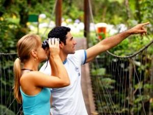 birdwatching-paraty-cairucu-14